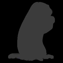 Ground hog marmot focinho silhueta