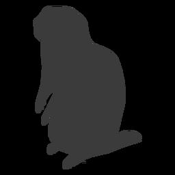 Marmota de porco à terra silhueta de cauda de focinho