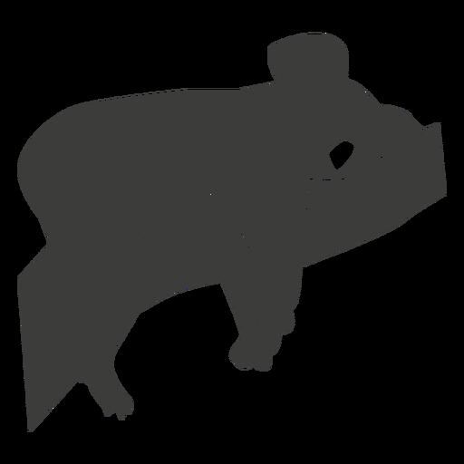 Koala orelha perna nariz ramo silhueta animal Transparent PNG