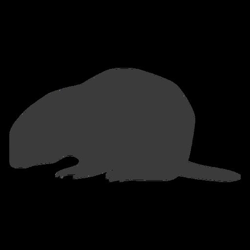 Marmota, chão, porco, focinho, rabo, silueta Transparent PNG