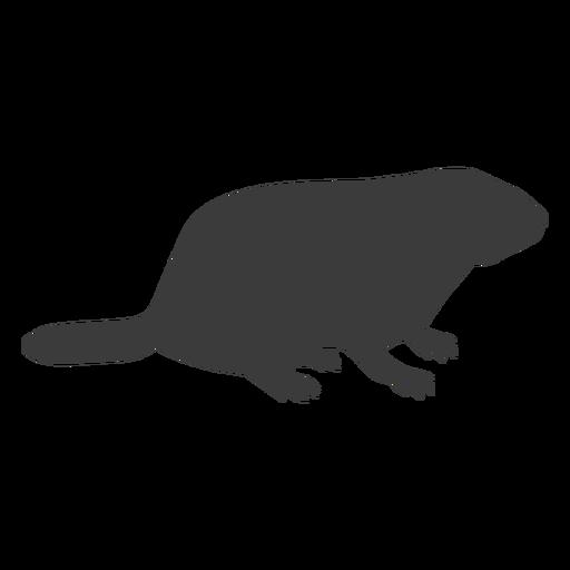 Marmota silhueta de focinho de porco Transparent PNG