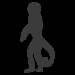 Silueta de cola de hocico de pierna de mono