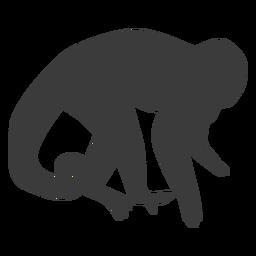 Monkey muzzle tail leg silhouette