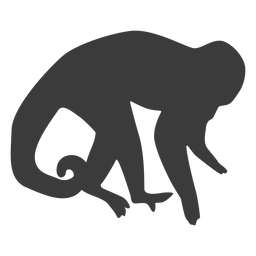 Silhueta de perna de cauda de macaco