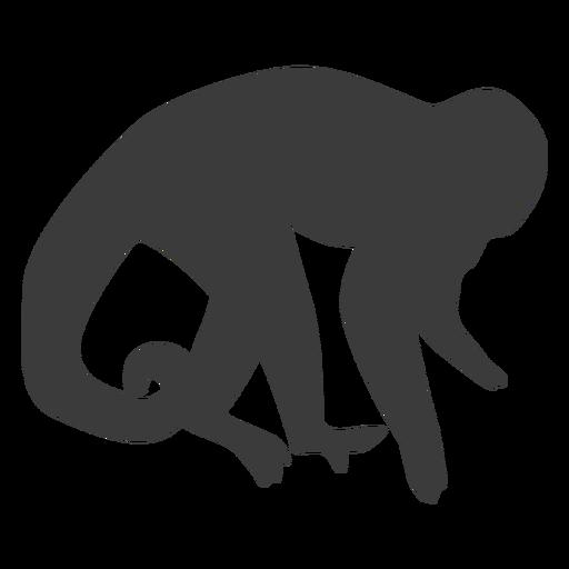 Monkey muzzle tail leg silhouette Transparent PNG