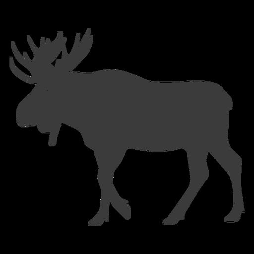 Alce antler alce silueta animais Transparent PNG