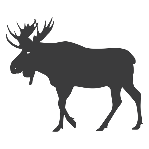 Moose antler elk silhouette animal Transparent PNG