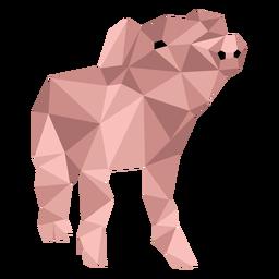 Oreja de cerdo hocico pezuña baja poli