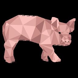 Ojo de hocico de cerdo oreja baja poli