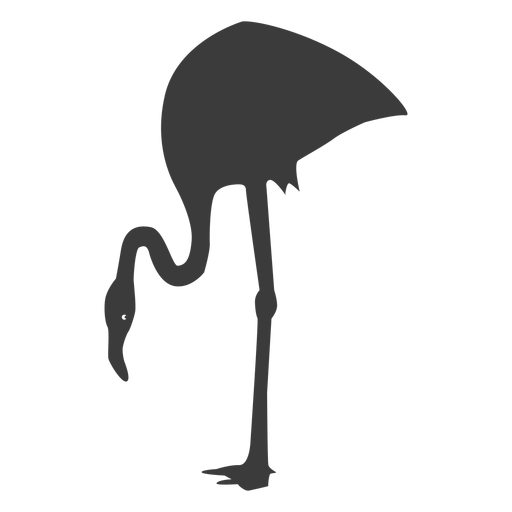 Pink flamingo leg beak silhouette bird Transparent PNG