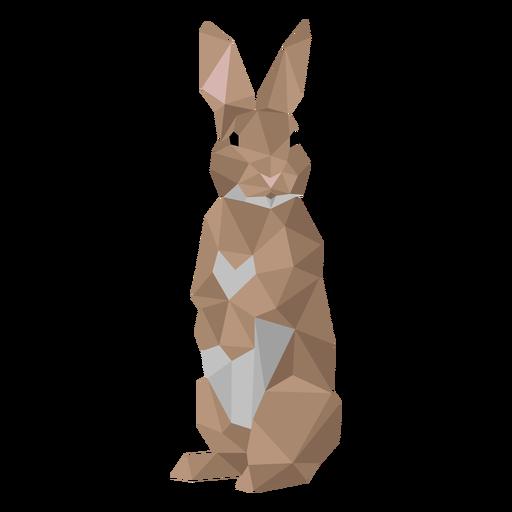 Oreja de conejo conejo bozal low poly Transparent PNG