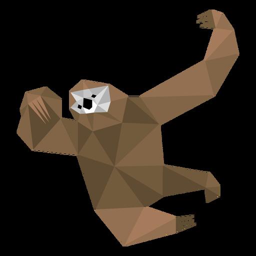 Garra de preguiça baixo poli Transparent PNG
