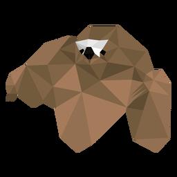 Garra de focinho de preguiça baixo poli