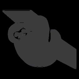 Silhueta de ramo de árvore de preguiça