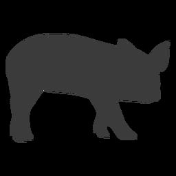 Snout pig ear hoof silhouette