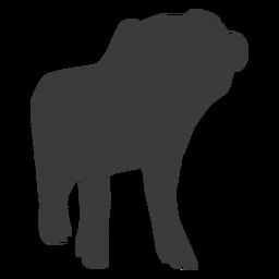 Snout pig hoof ear silhouette