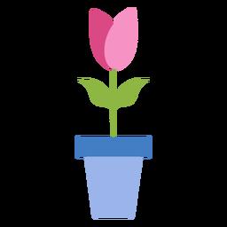 Pétalo de maceta de tulipán plano