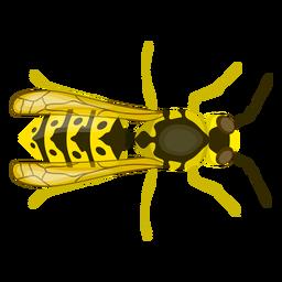 Wespe Biene Streifen Flügel flach