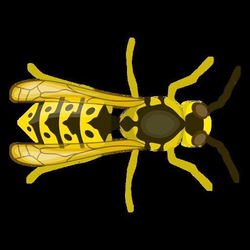 Vespa de abelha asa de listra plana Transparent PNG