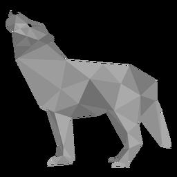 Lobo uivador cauda de predador baixo poli
