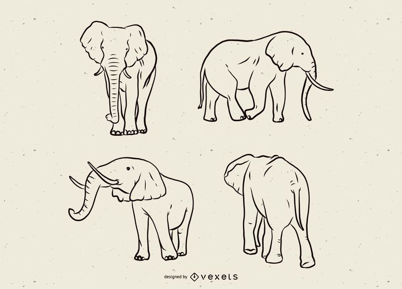 Elephant line set