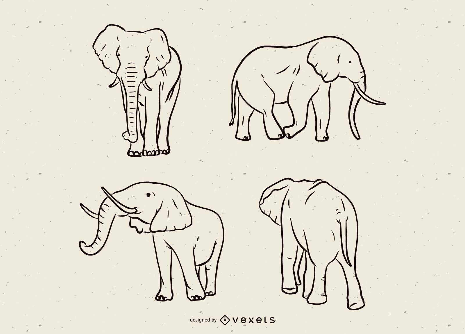 Conjunto de línea de elefante