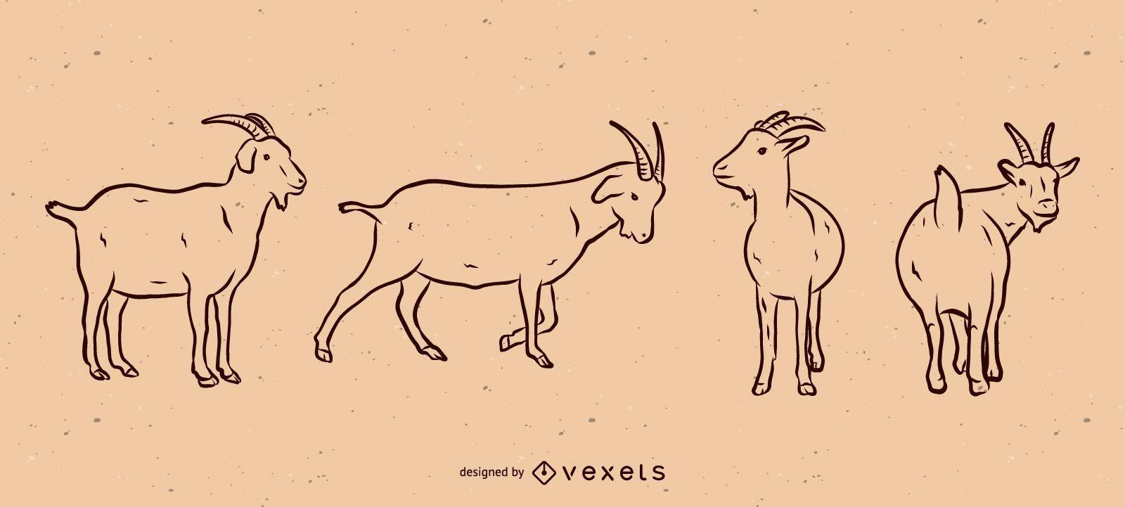 Conjunto de ilustración de línea de cabra