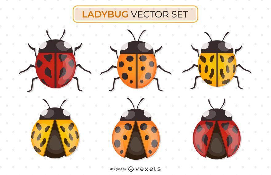 Ladybug vector set