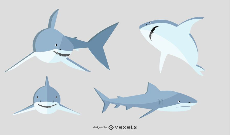 Flat Shark Illustration Set