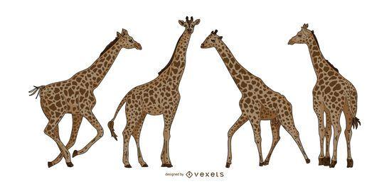 Conjunto de ilustração colorida de girafa