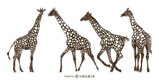 Conjunto de silhueta detalhada de girafa