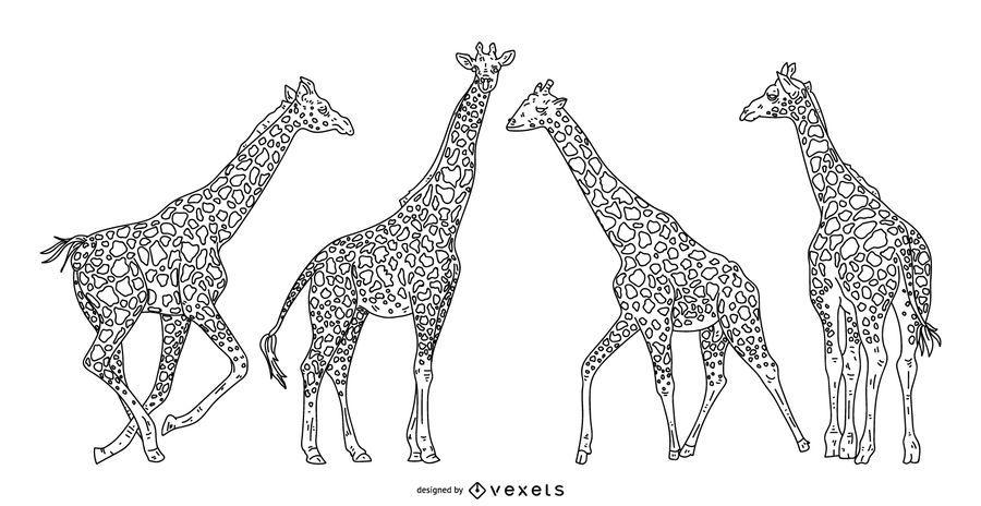 Conjunto de ilustración de trazo de jirafa