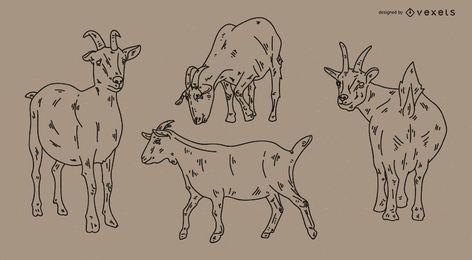 Conjunto de ilustração de estilo de traçado de cabra