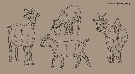 Goat Stroke Style Illustration Set