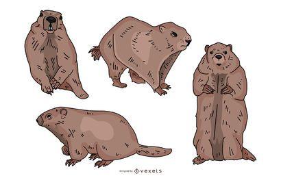 Conjunto de ilustração colorida de marmota