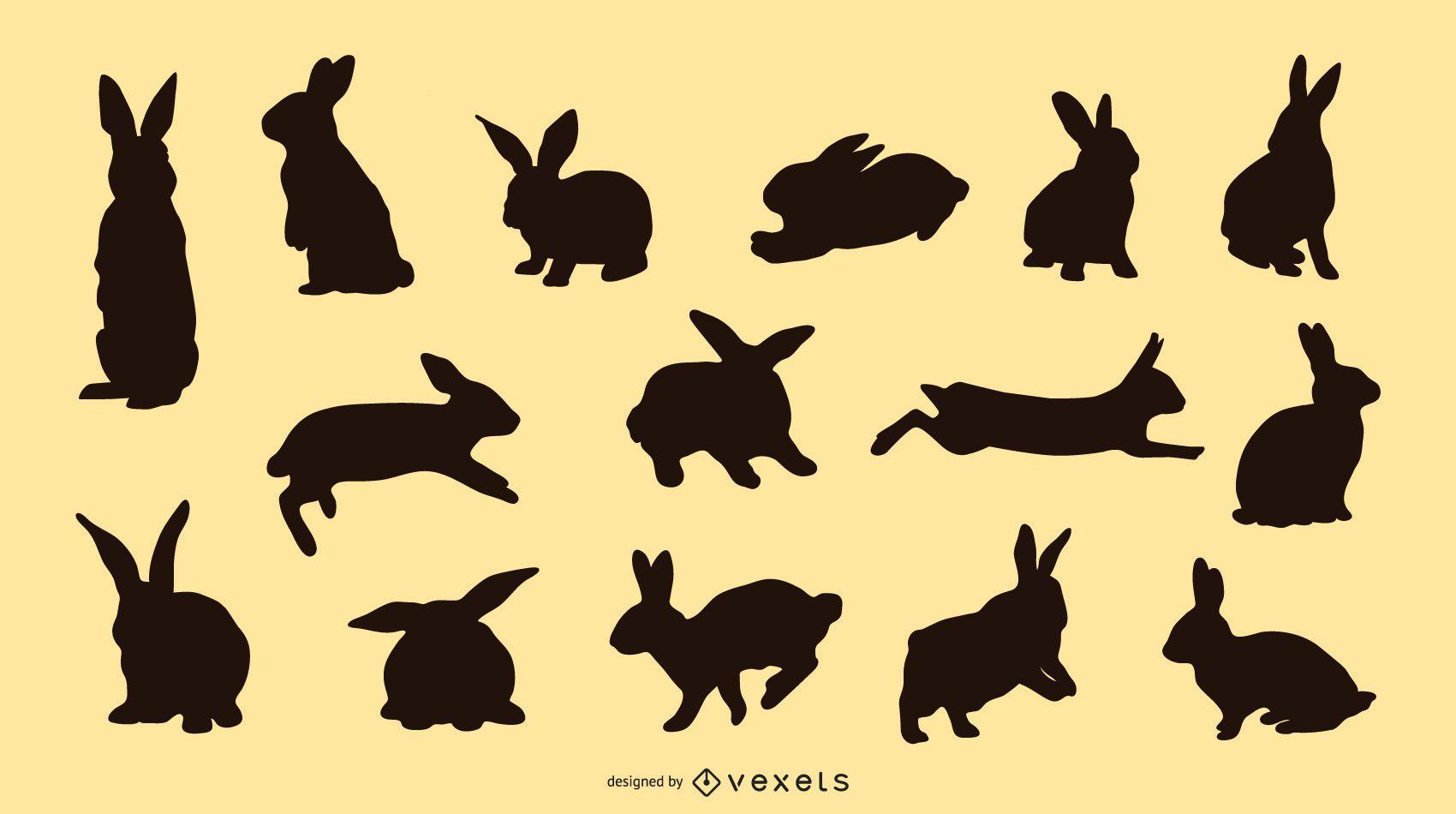 Colección silueta de conejo