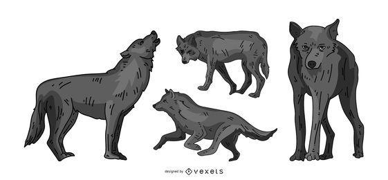 Conjunto de ilustração de lobo cinzento