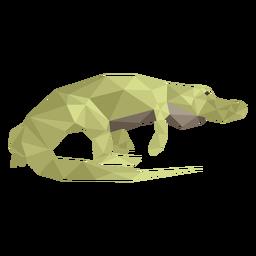Alligator caminando bajo poli