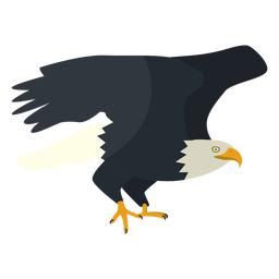 Bald eagle flat illustration