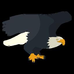 Ilustração plana de águia careca
