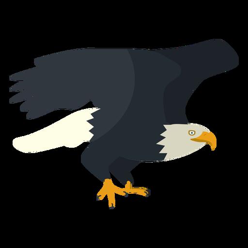 Bald eagle flat illustration Transparent PNG