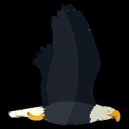 Águia careca voando plana