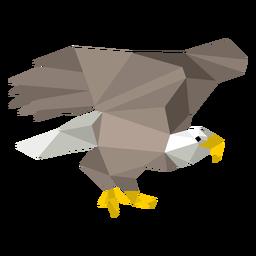 Águila calva baja poli