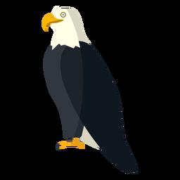 Águila calva vista lateral plana