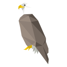Bald eagle side view lowpoly