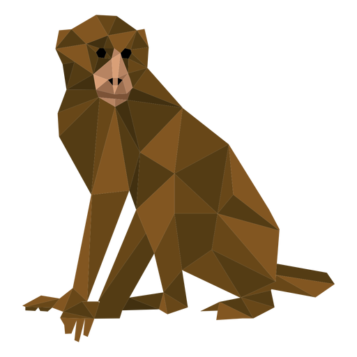 Capuchin monkey low poly Transparent PNG