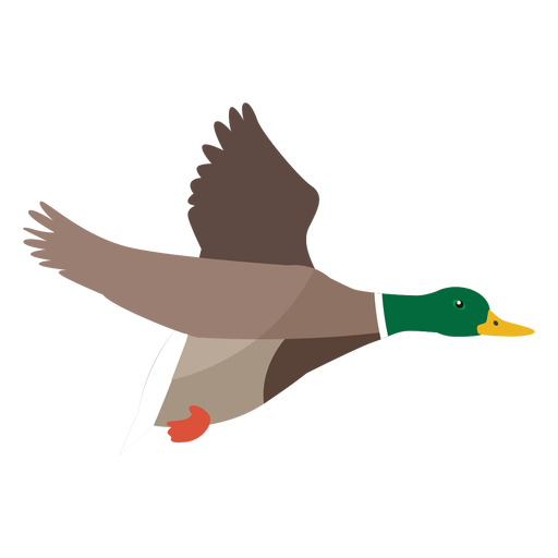 Duck flying flat Transparent PNG