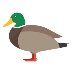 Duck side view flat