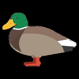 Ente Seitenansicht flach