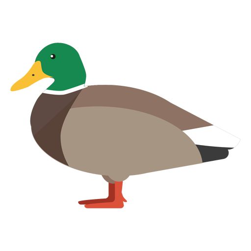 Duck side view flat Transparent PNG